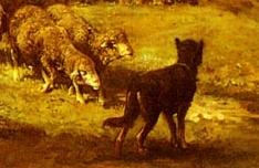Jacque dog
