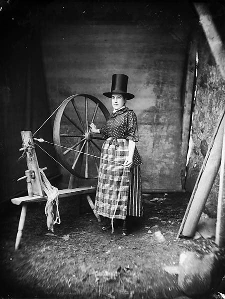 Welsh Spinner 1885 3