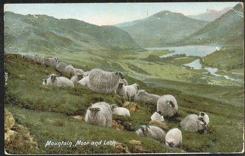 Mountain, Moor and Loch - 1906
