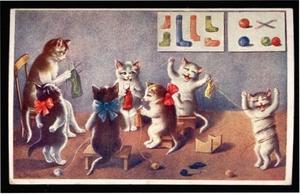 Kitten_knitting_classohler